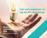 Business Innovation Day 2017