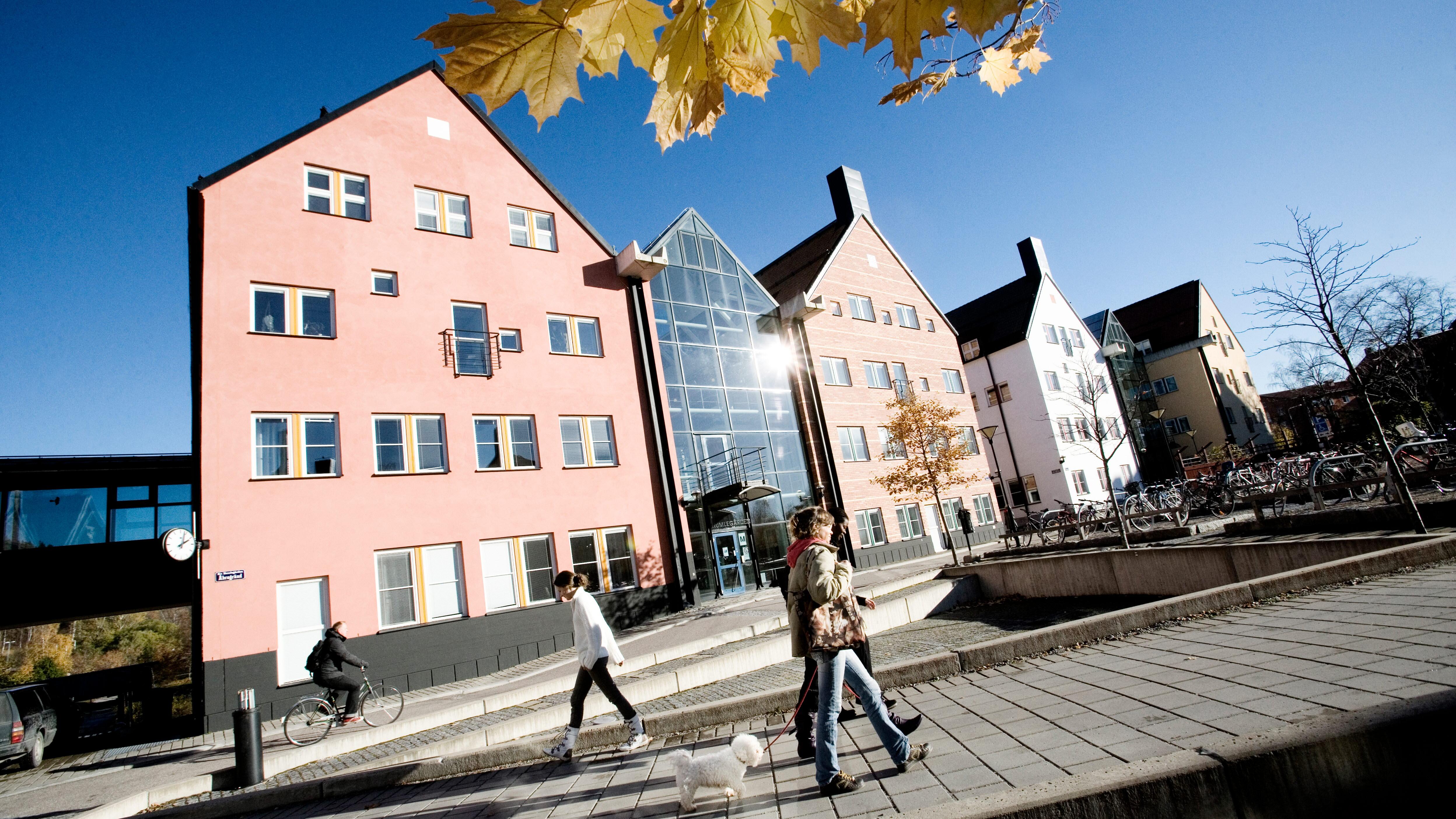 This Is Mid Sweden University - Mid sweden university map